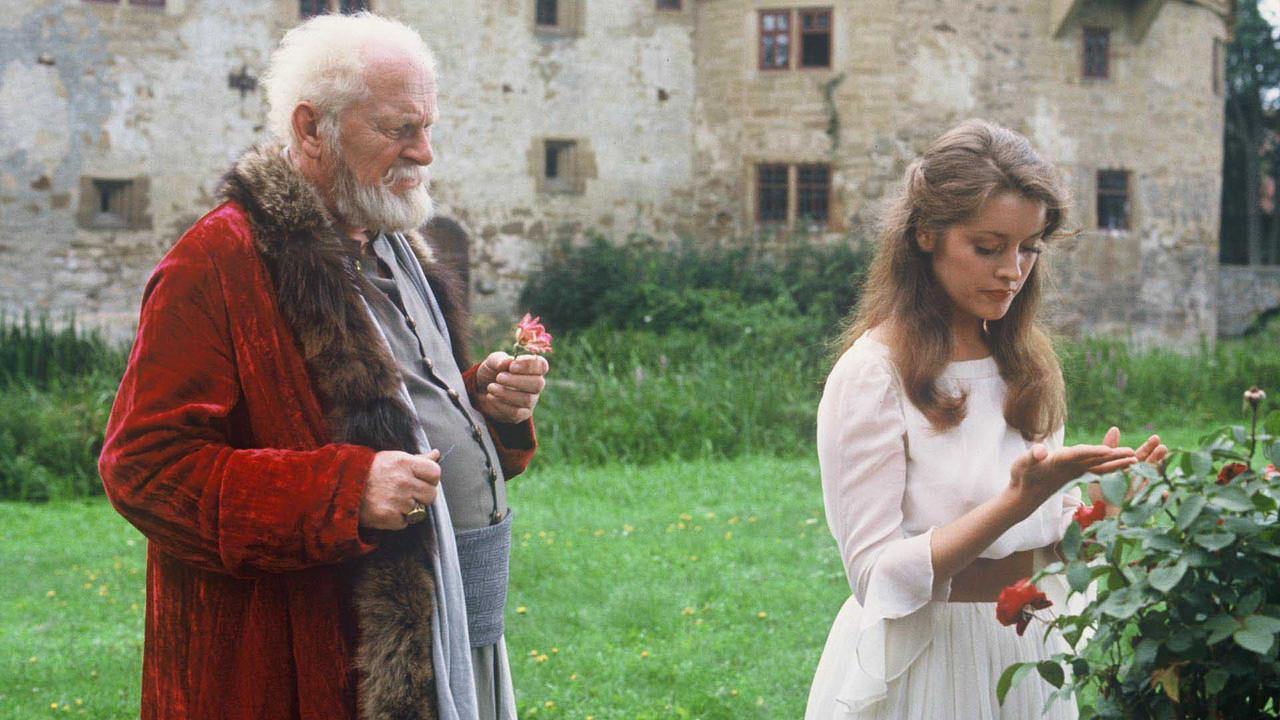 Ziegler Film Köln